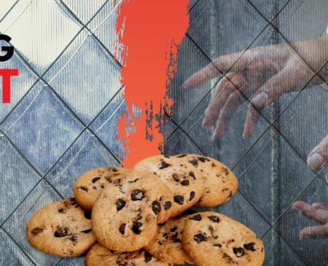 Publishers em Pânico com Bloqueio por Defeito dos Cookies pelo Firefox